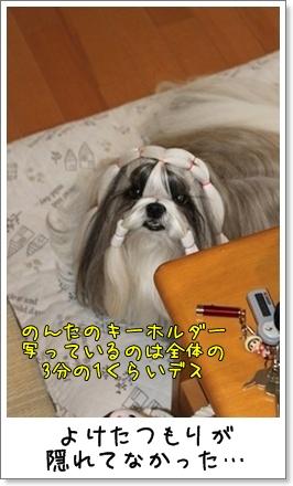 2010_1014_074828AA.jpg