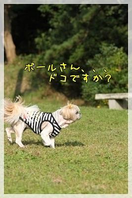 2010_1016_142506AA.jpg