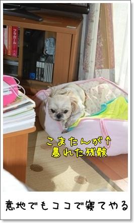 2010_1017_104614AA.jpg