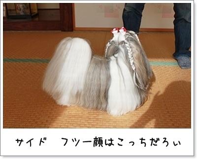 2010_1017_135349AA.jpg