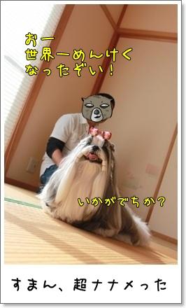 2010_1017_135608AB.jpg