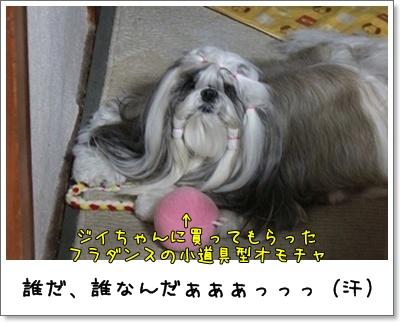 2010_1018_193530AA.jpg