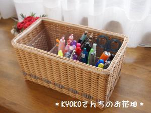 013_convert_20110111120359.jpg