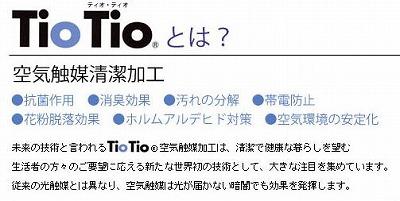 tio_20110418123544.jpg