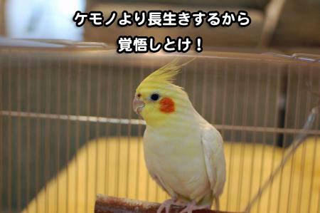 *DSC_1657_02
