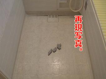 2010_10030026のコピー