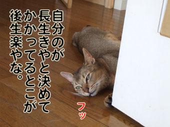 2010_07240010.jpg