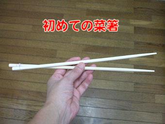 2010_08010001.jpg