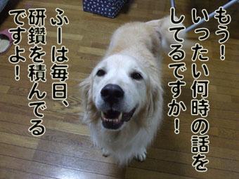 2010_08020020.jpg