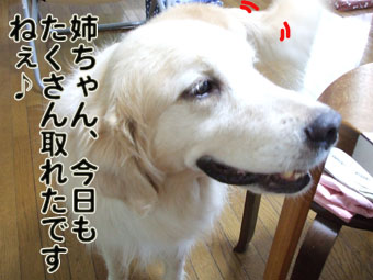 2010_08070001.jpg