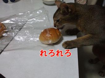 2010_09070014.jpg