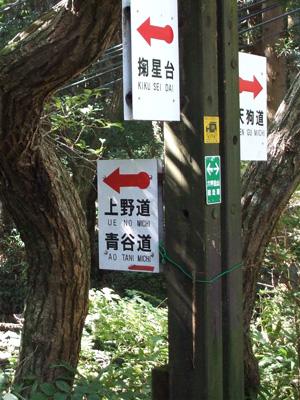 2010_10010013.jpg
