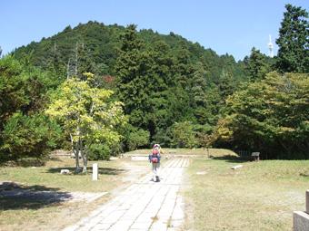 2010_10010022.jpg