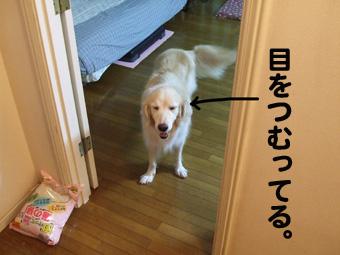 2010_10030014.jpg