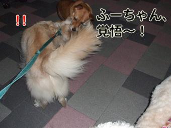 2010_10070006.jpg