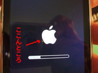 2010_10070027.jpg