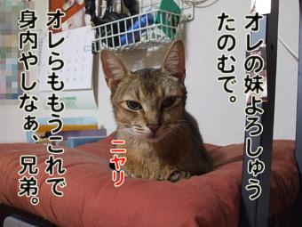2010_10150028.jpg