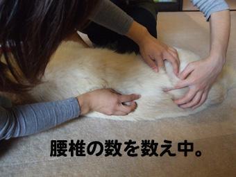 2010_10200039.jpg