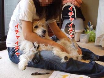 2010_10200062.jpg