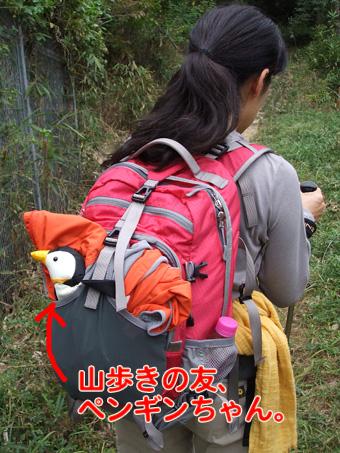 2010_10230001.jpg