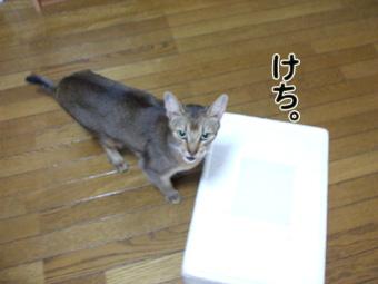 2010_10290015.jpg