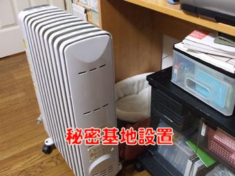 2010_10290028.jpg