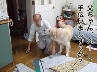 2010_11040004.jpg