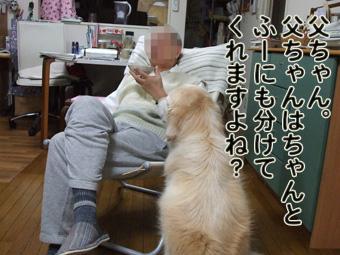 2010_11040078.jpg