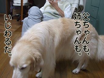 2010_11040080.jpg