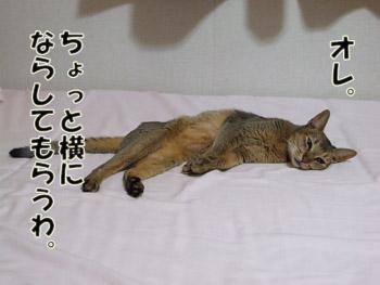 2011_09030011.jpg