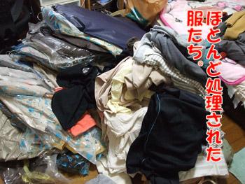 2011_10030002.jpg