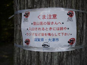 2011_10080013.jpg