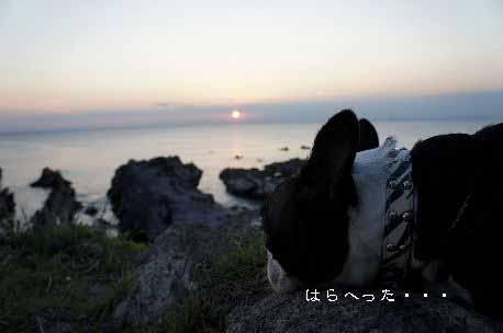 yuhi03.jpg