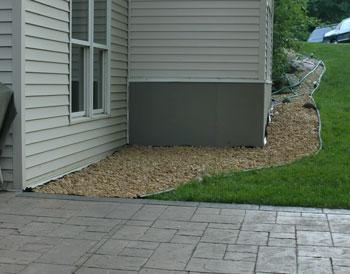 backyard07031105.jpg
