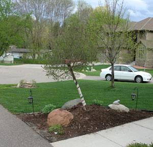frontyard051211.jpg