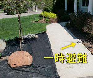 frontyard0516112.jpg