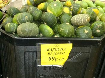 kapocha1.jpg