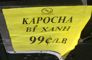 kapocha2.jpg