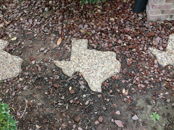 texassteppingstone.jpg