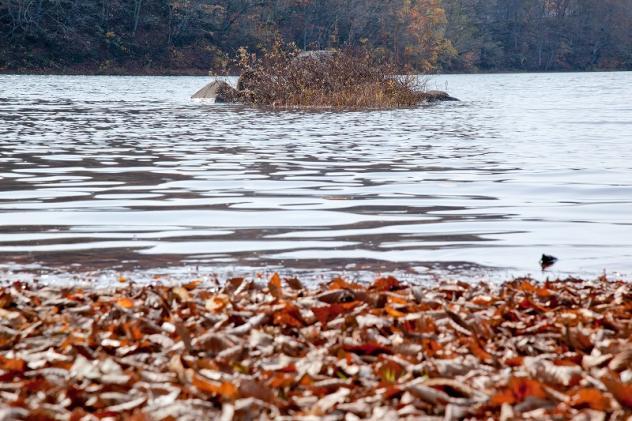 小野川湖1