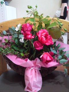 私が育てたお花を母へ