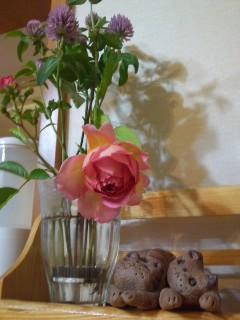 024お庭に咲いたバラ^^