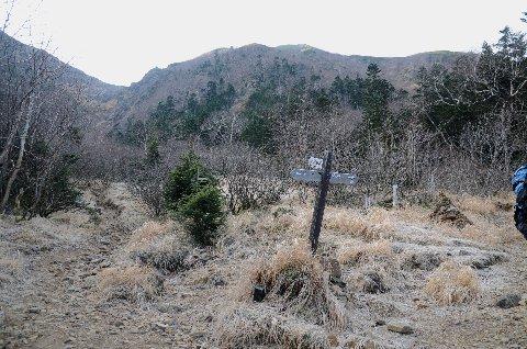 20111113-10.jpg