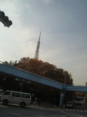 koyo8.jpg