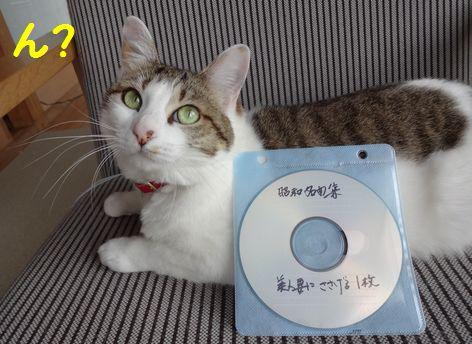 CDのせい?
