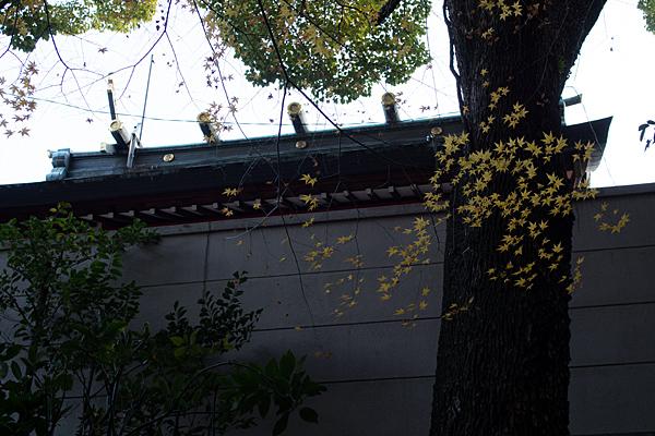 生玉稲荷-8