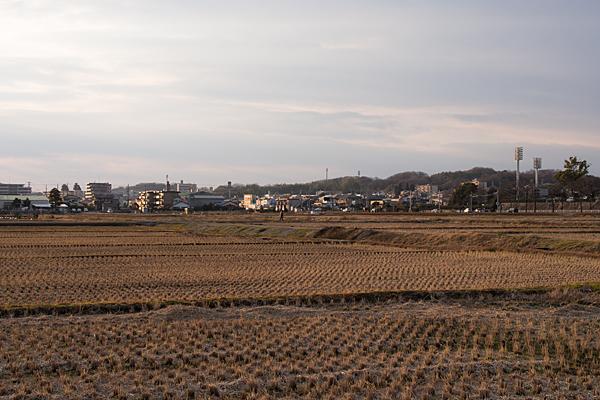 日々の風景-9