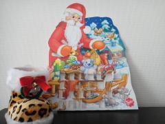 DSC00511_convert_20101221102219.jpg