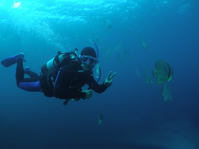 青の洞窟ファンダイビング