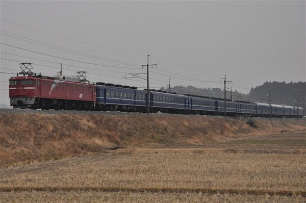 EF81-133-2
